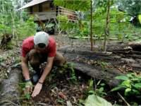 Volunteer in Südamerika