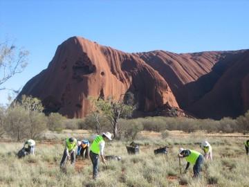 Volontariat Australie