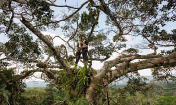 Ecovolontariat en Amérique du Sud