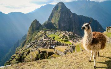 Volontariat en Amérique du Sud