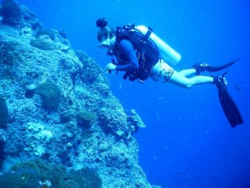 Ecovolontariat marin en Thailande