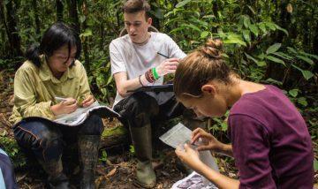 écovolontariat pour la biodiversité