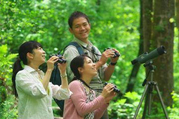 Mission d'écovolontariat au Japon
